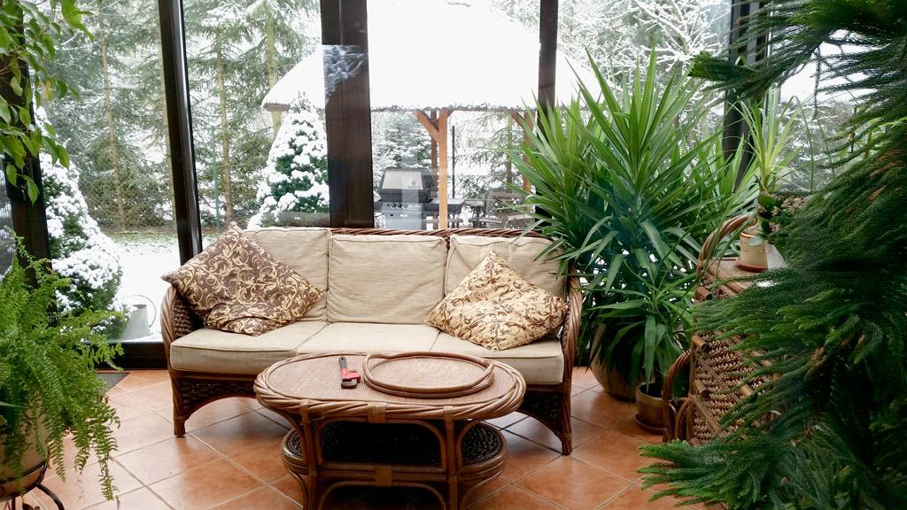 Ogród, nie tylko zimowy