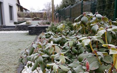 Przygotowanie ogrodu do zimy
